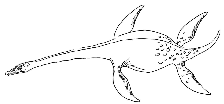 Раскраска Морской динозавр Скачать ,Динозавры,.  Распечатать