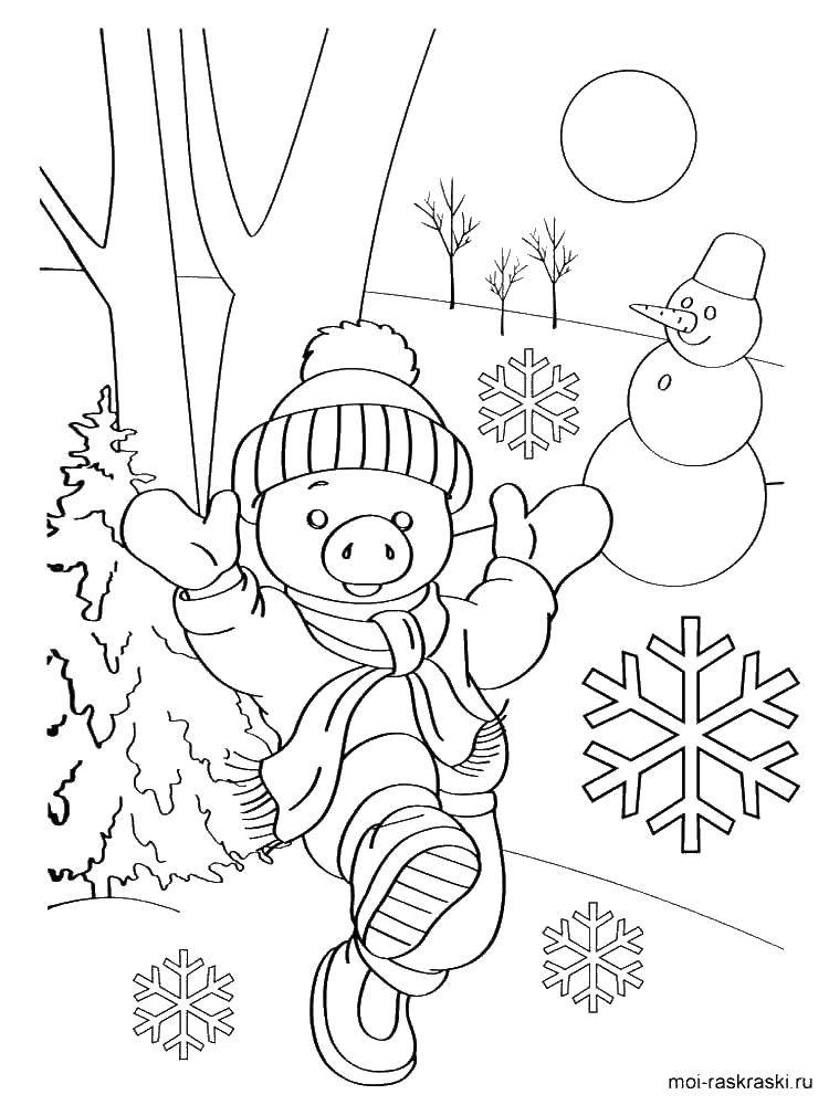 Coloring Winter garden. Category winter. Tags:  Zimnicea.