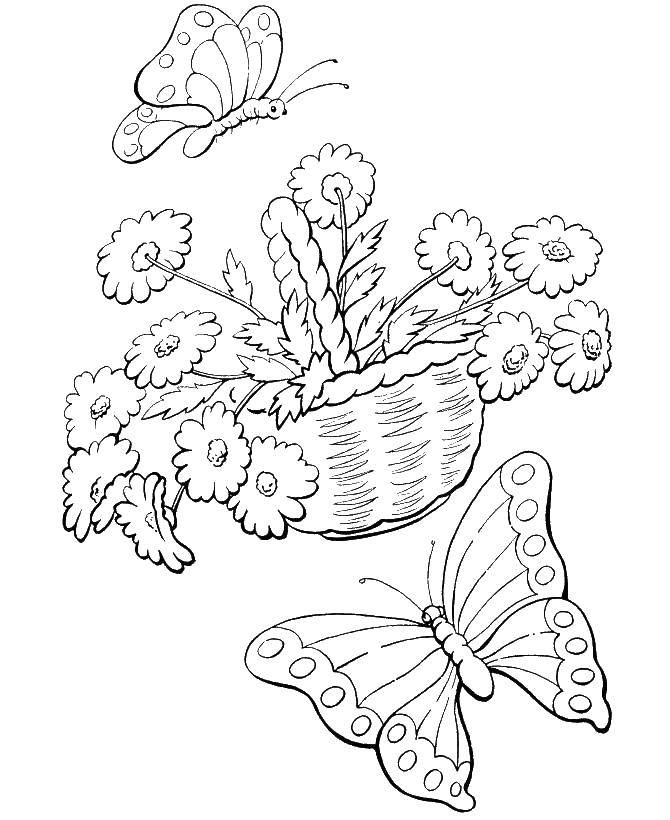 Coloring sheet spring Download elephant, Africa, the numbers.  Print