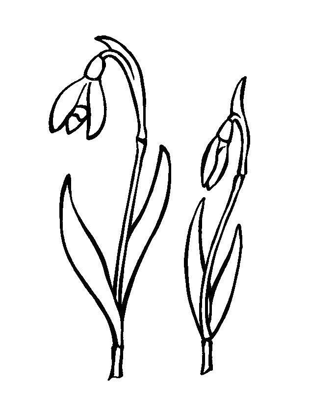 Coloring sheet spring Download .  Print