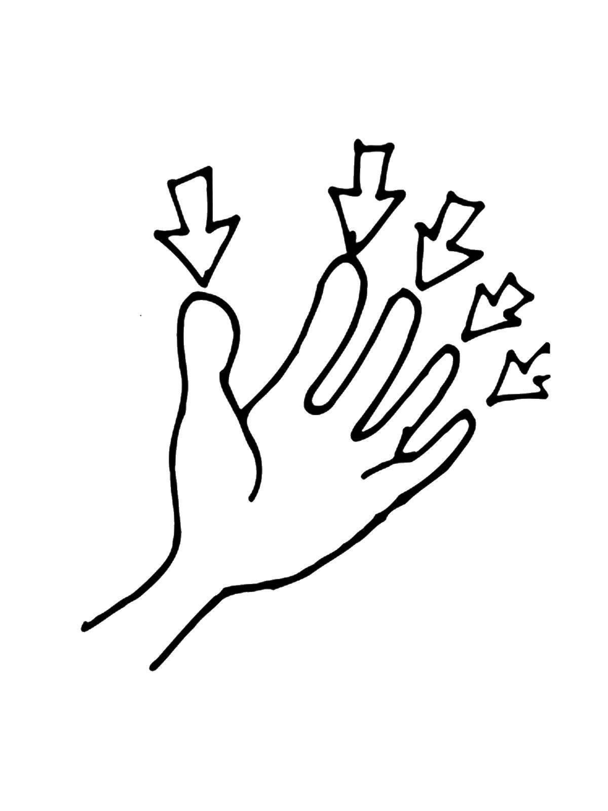 при картинки пальцы для раскрашивания лучше справа налево