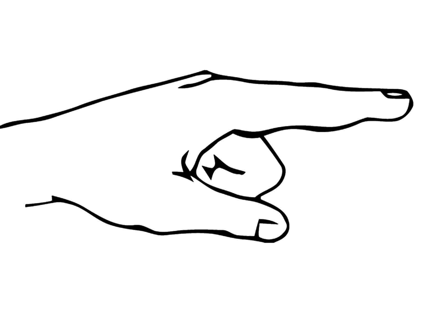 картинки пальцы для раскрашивания масла может доставить