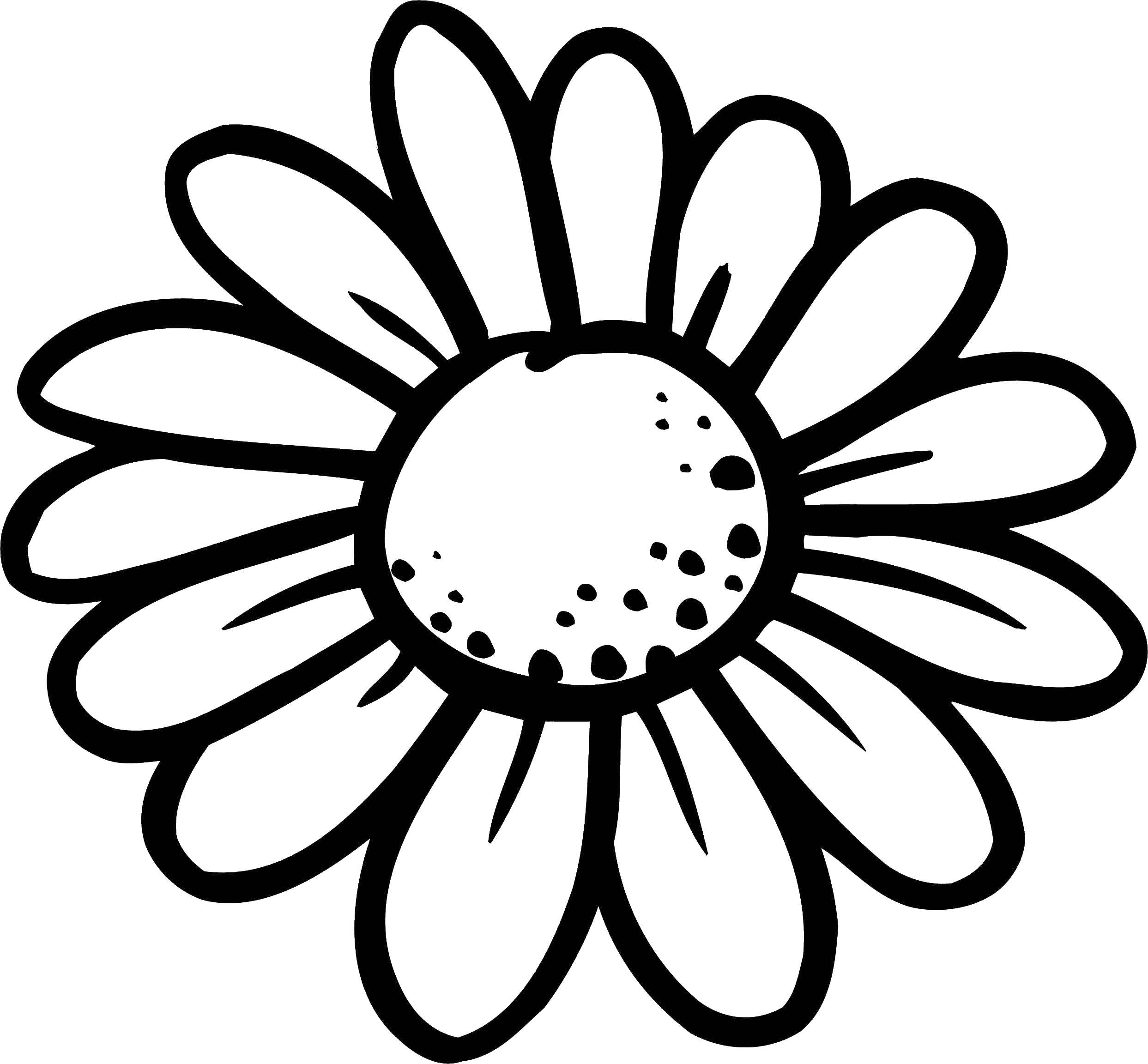 картинки раскраски цветы крупные шаблоны любой, даже минимальной