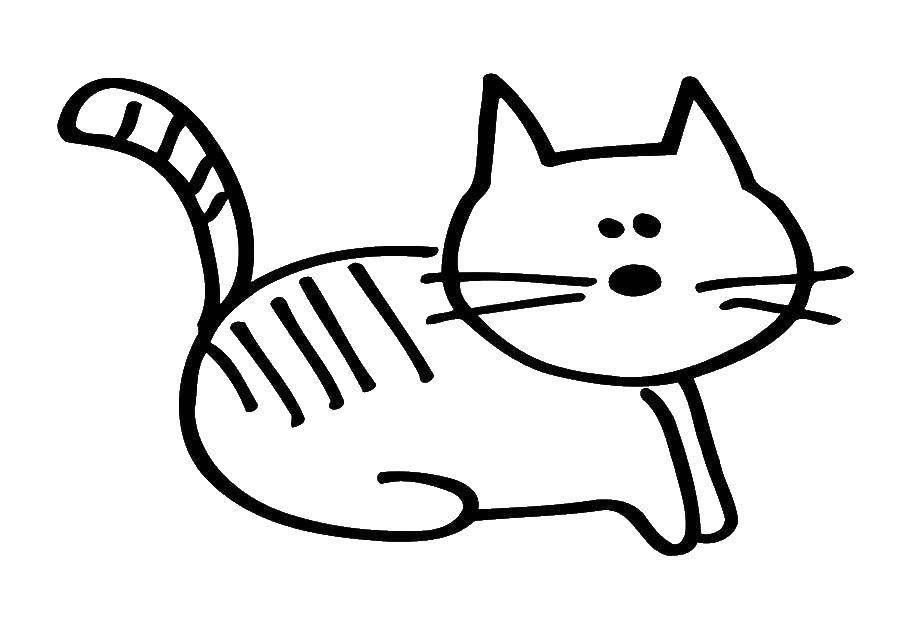 Раскраска котики Скачать Животные, котёнок.  Распечатать