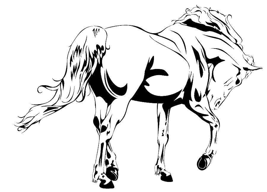 Распечатать для принтера картинки лошадей