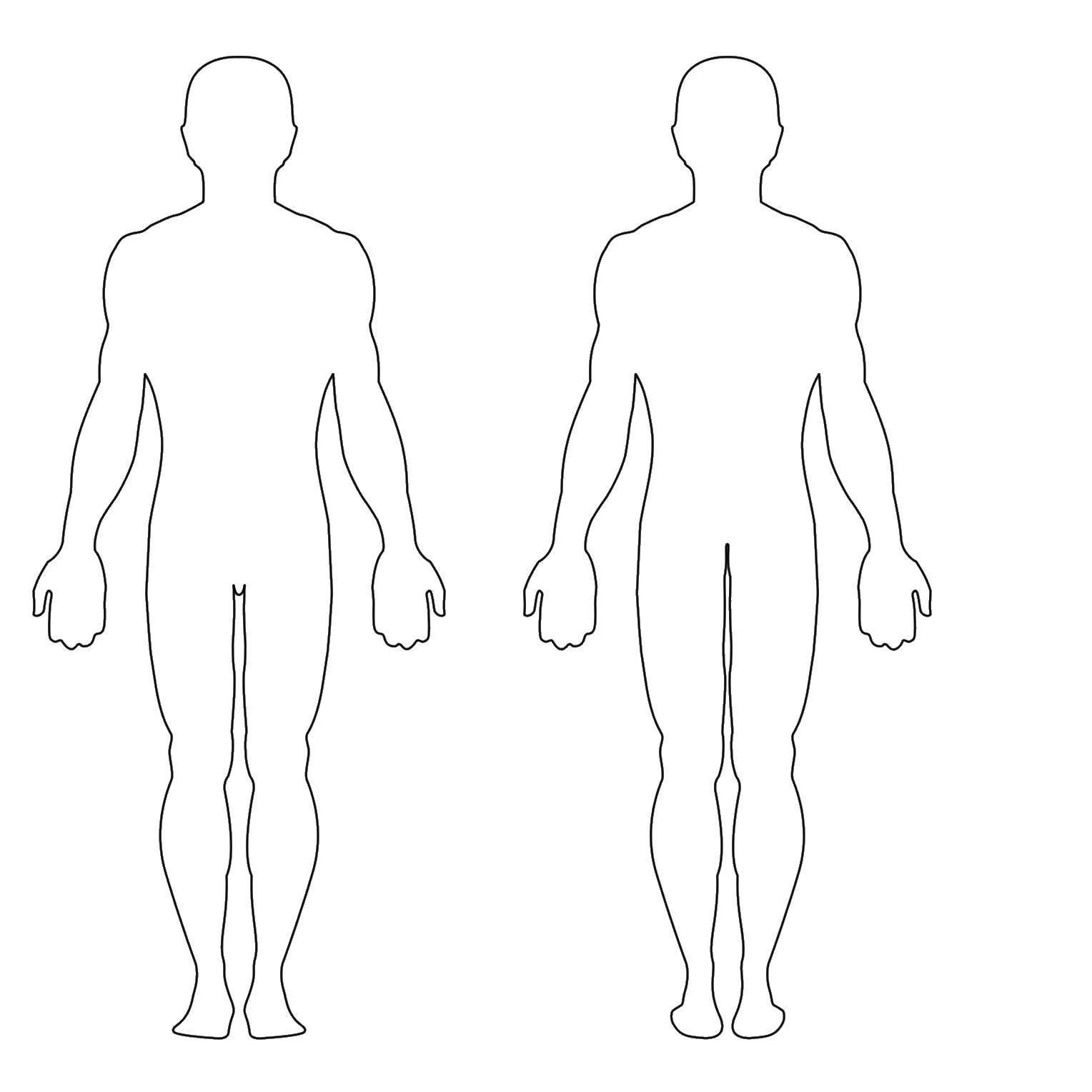 раскраска силуэт человека в полный рост
