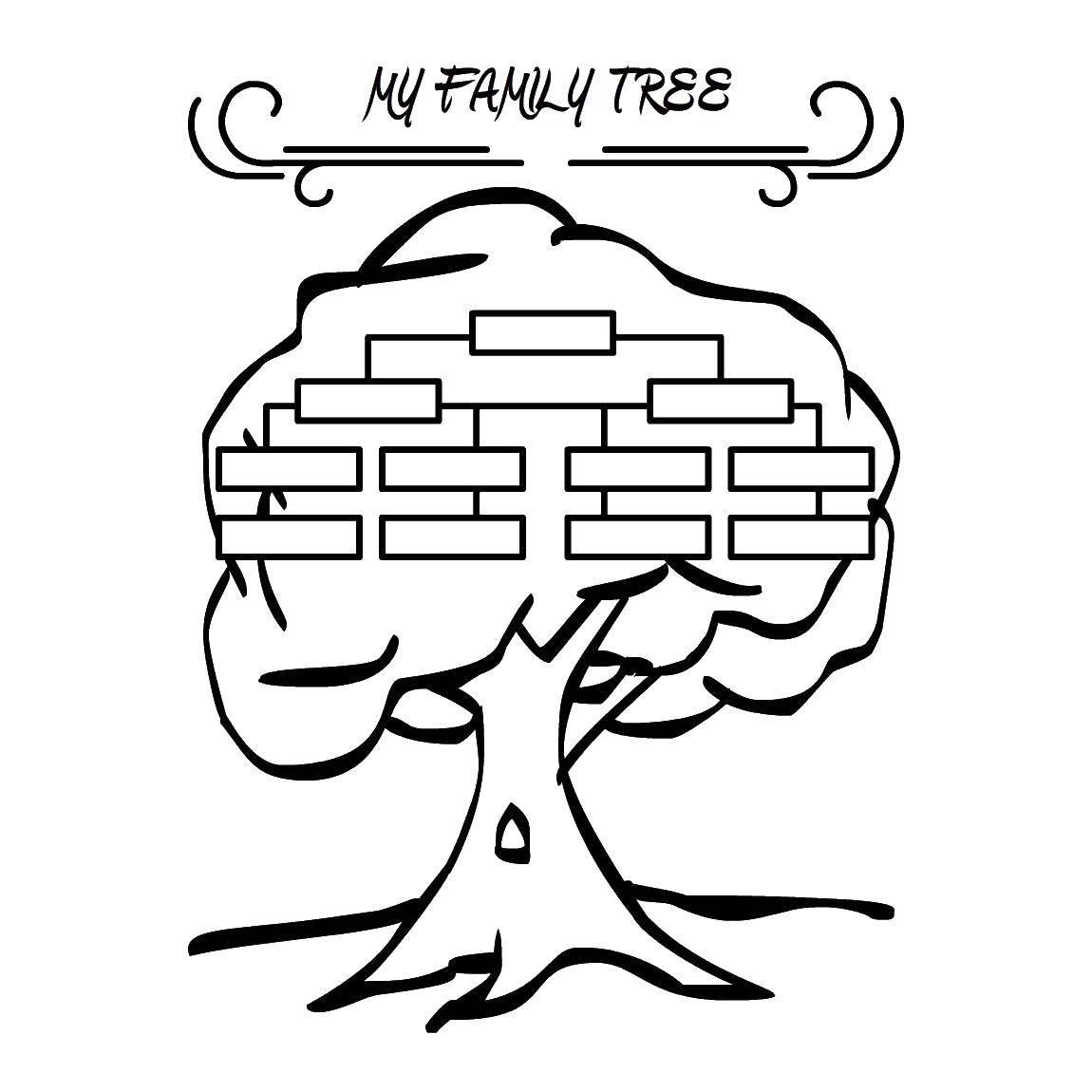 Раскраски дерева, Раскраска Ветки и дерево Контур дерева.