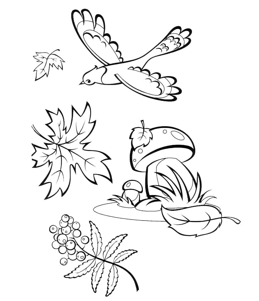 Картинки с осенью печатать