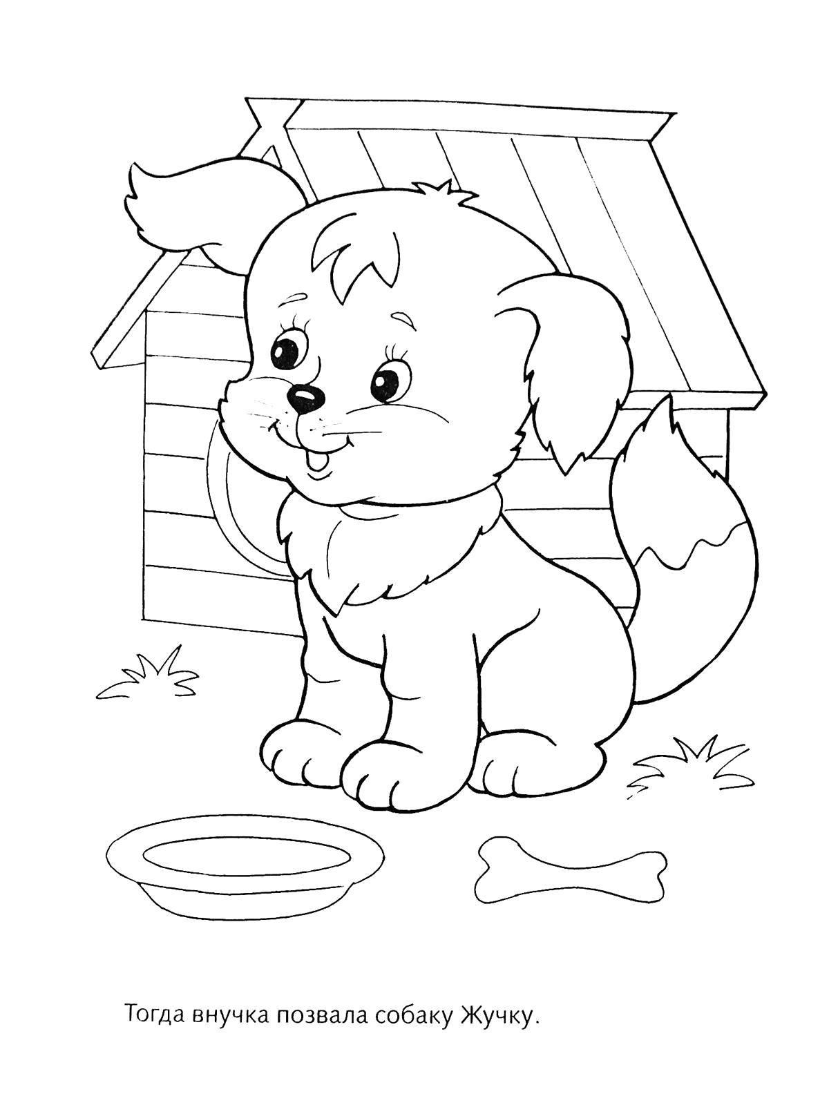 Coloring sheet turnip Download .  Print