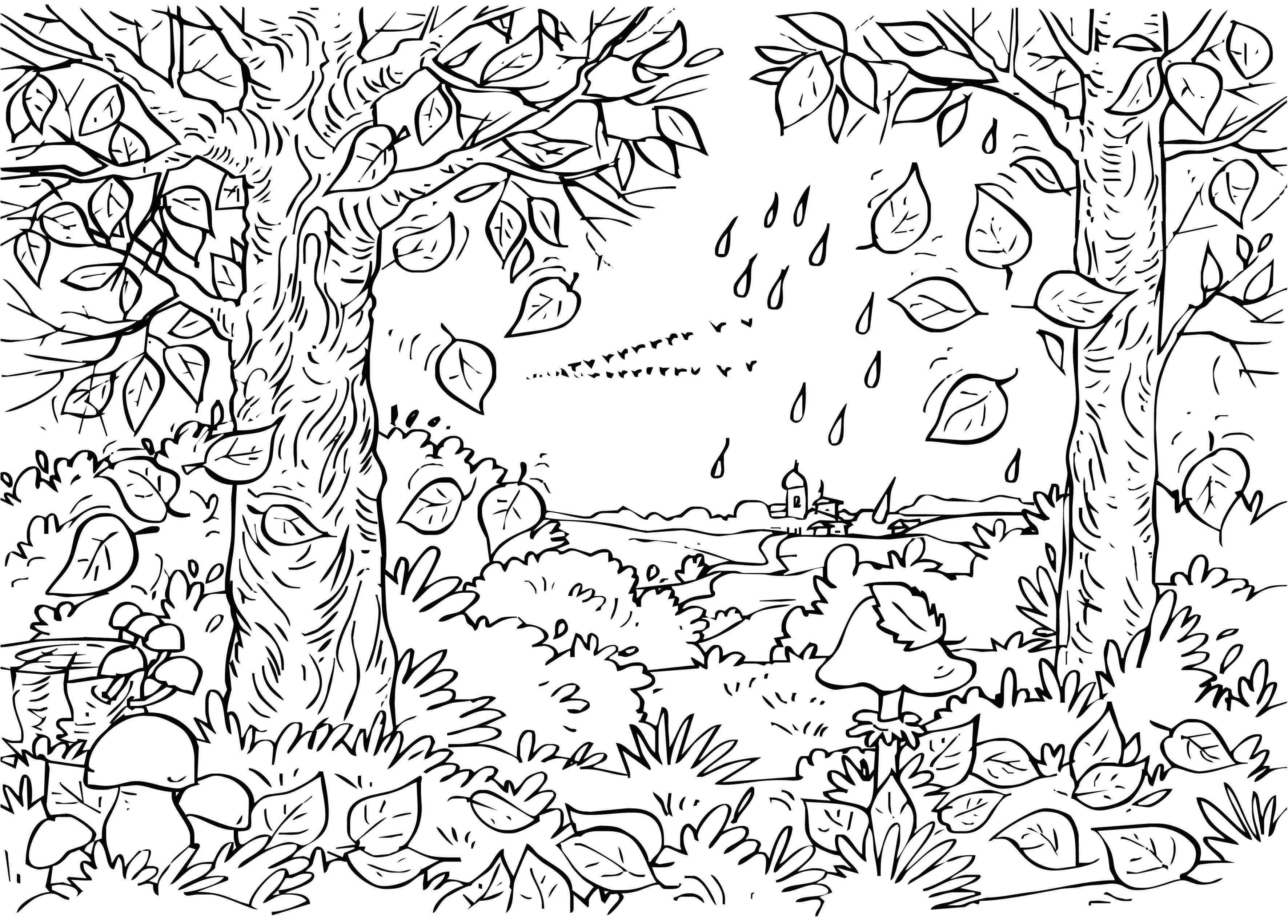 Рисунок осеннего леса карандашом