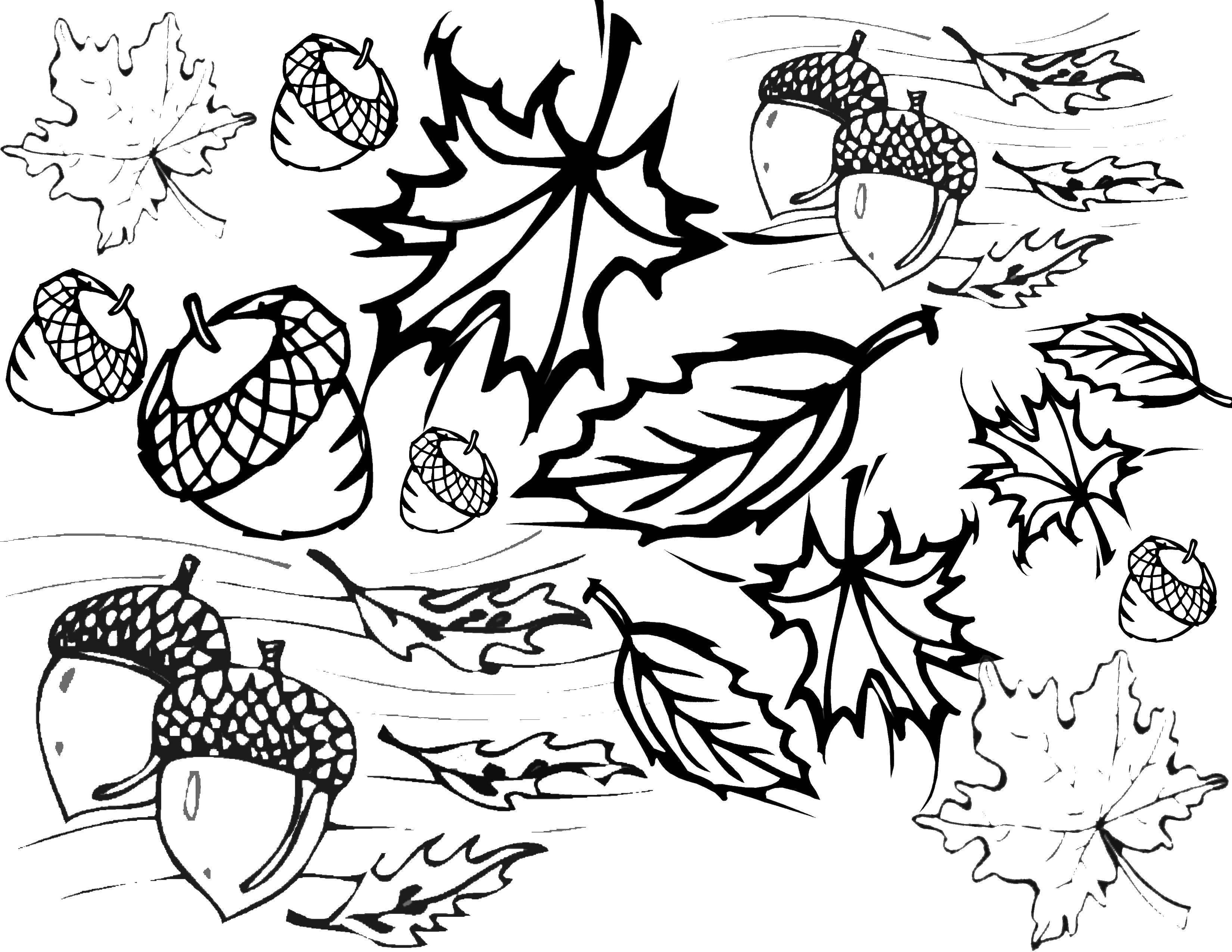 Картинка осень напечатать