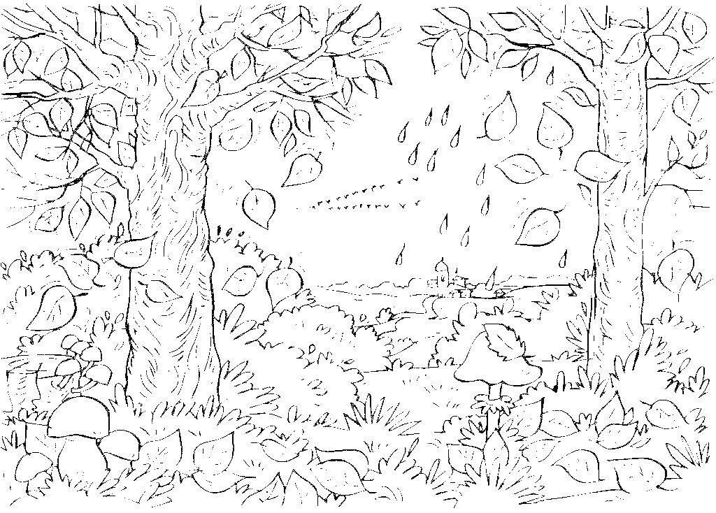 Раскраски дерева, Раскраска Кленовые листья падают с ...