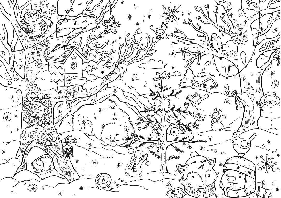 Coloring sheet winter Download elephant, Africa, the numbers.  Print