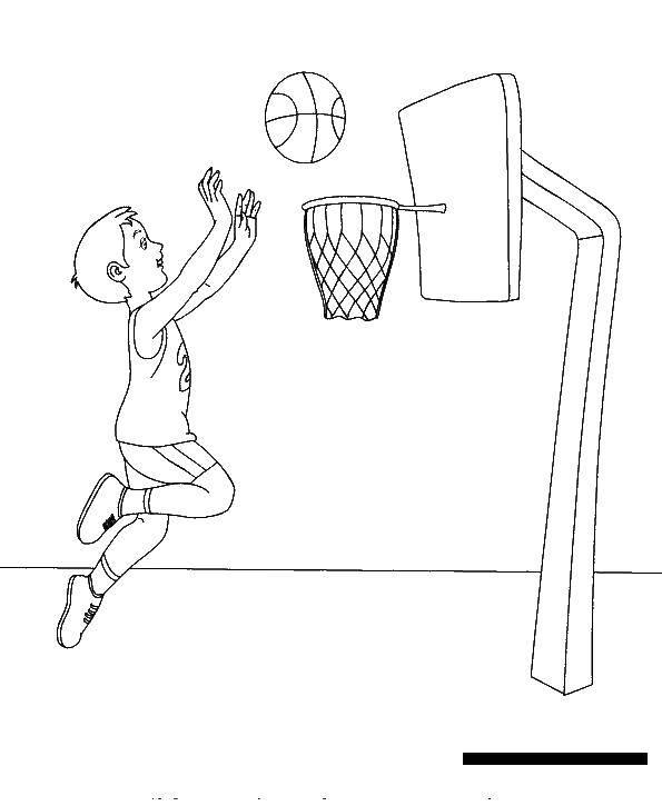 Coloring sheet basketball Download .  Print