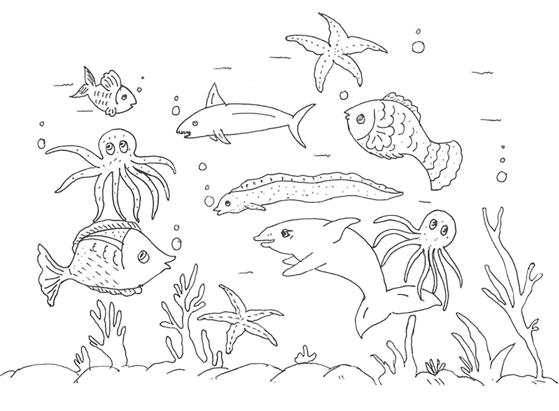 картинки подводный мир рисунки карандашом ортобузда
