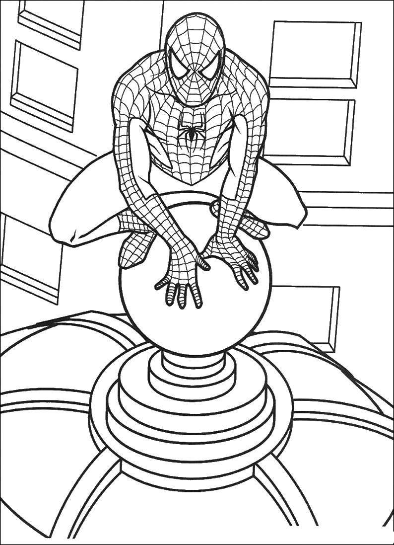 Coloring sheet spider-man Download .  Print