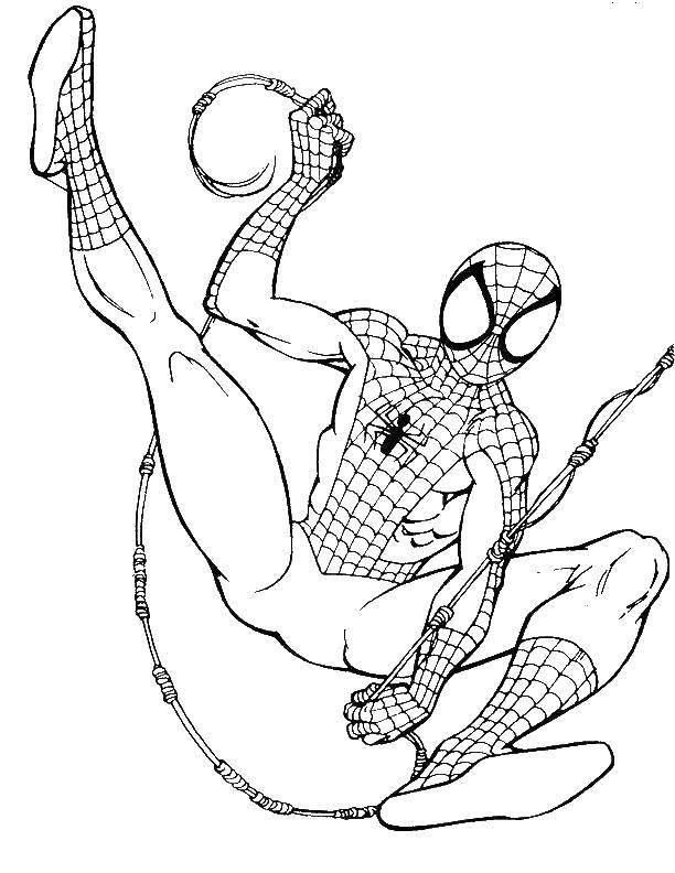 Название: Раскраска Человек паук на паутине. Категория: человек паук. Теги: Комиксы, Спайдермэн, Человек Паук.