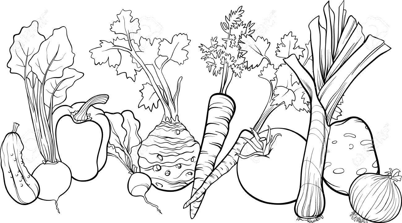 Раскраски баклажан, Раскраска Баклажан Овощи на английском.