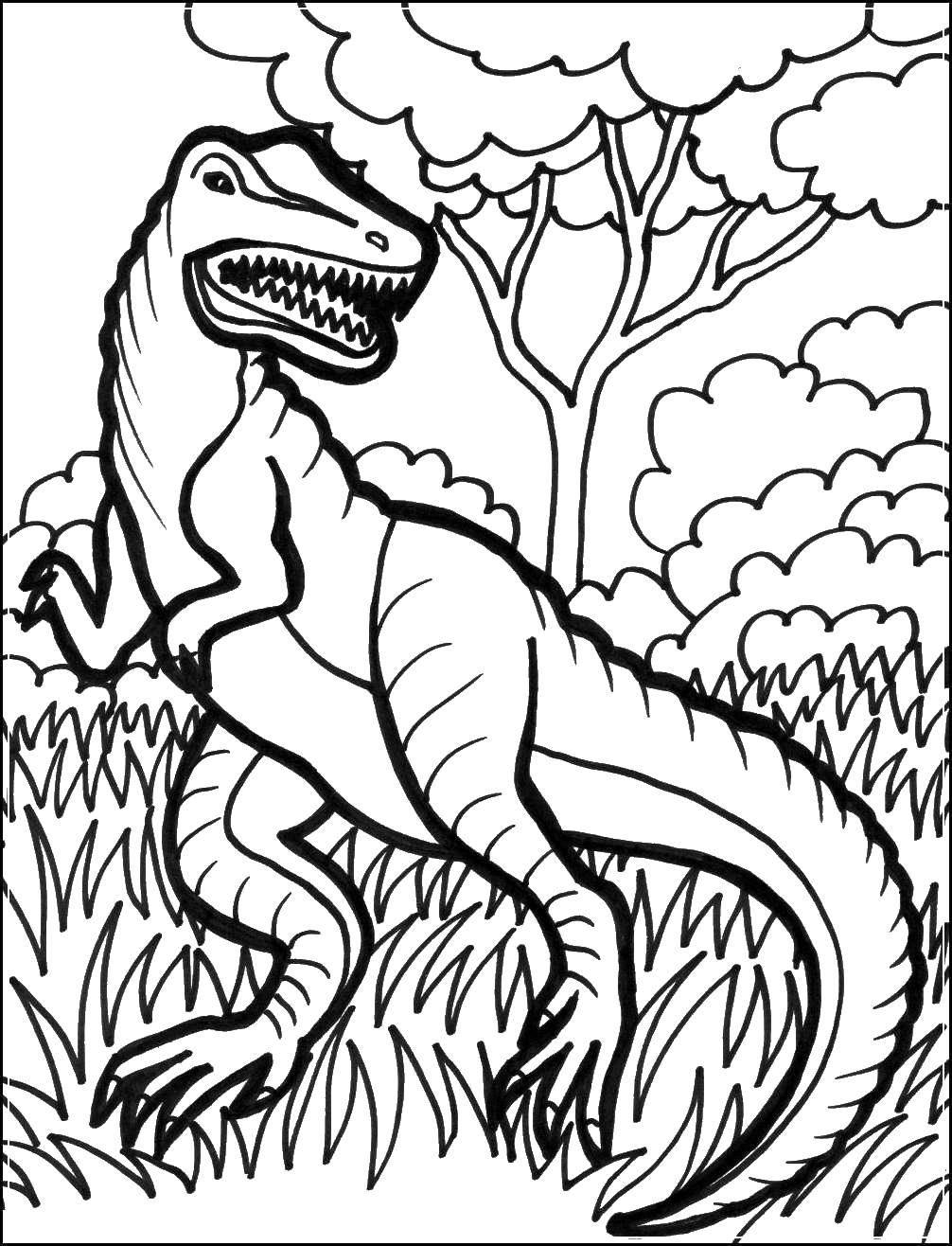 Раскраски рэкс, Раскраска Тираннозавр рэкс динозавр.