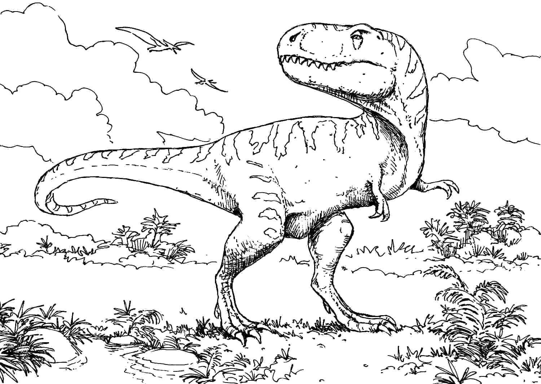 тираннозавр рекс картинки для разукрашивания для
