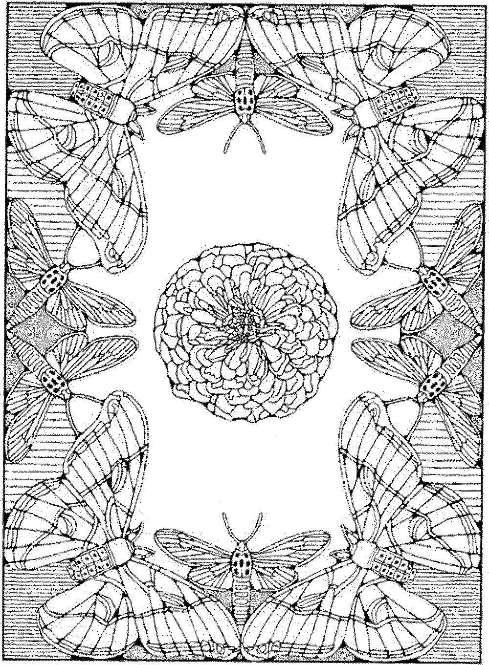 Coloring sheet butterfly Download missiles, aircraft, sky.  Print ,rockets,
