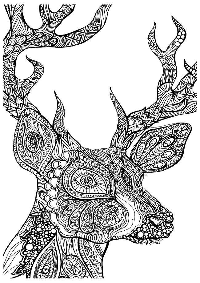 Раскраски Волк, Раскраска Красивый узорный волк узоры.