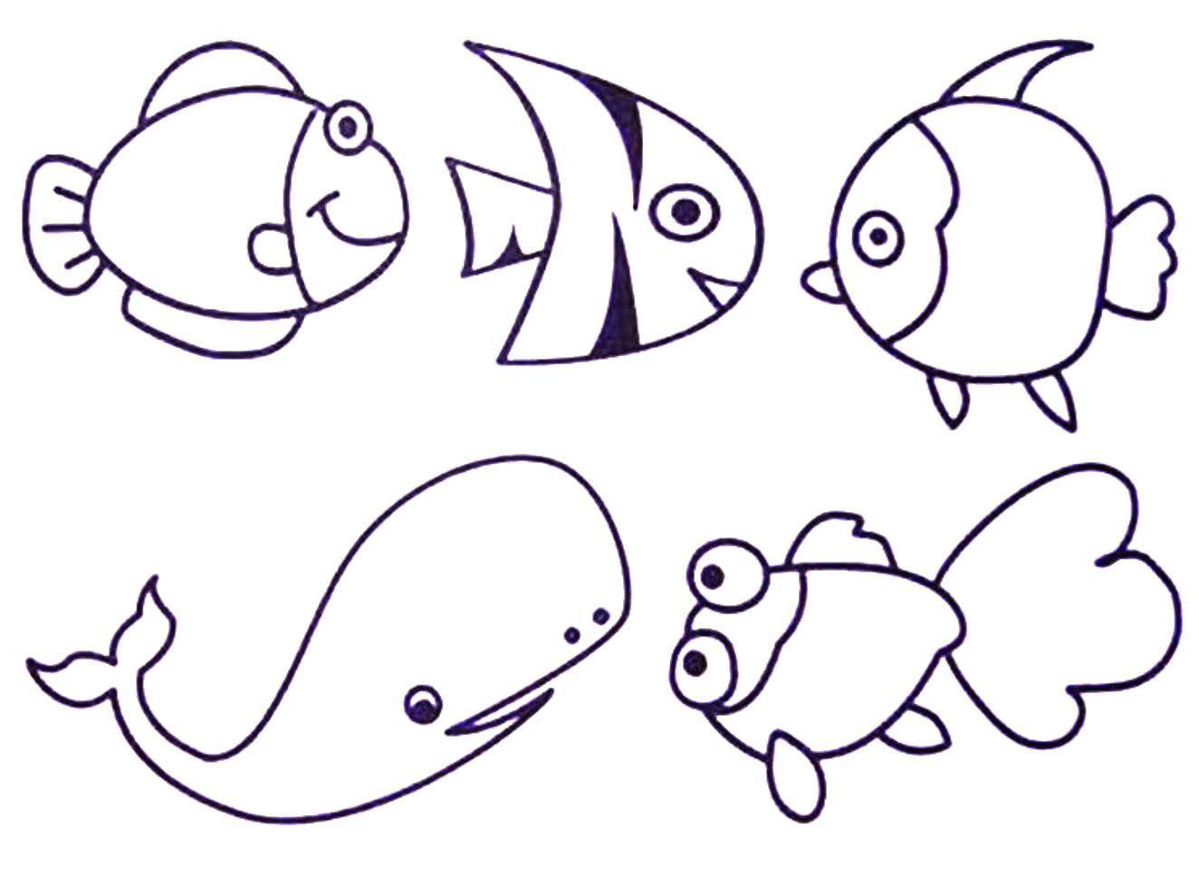Coloring sheet marine animals Download Dima, table.  Print ,friendship,