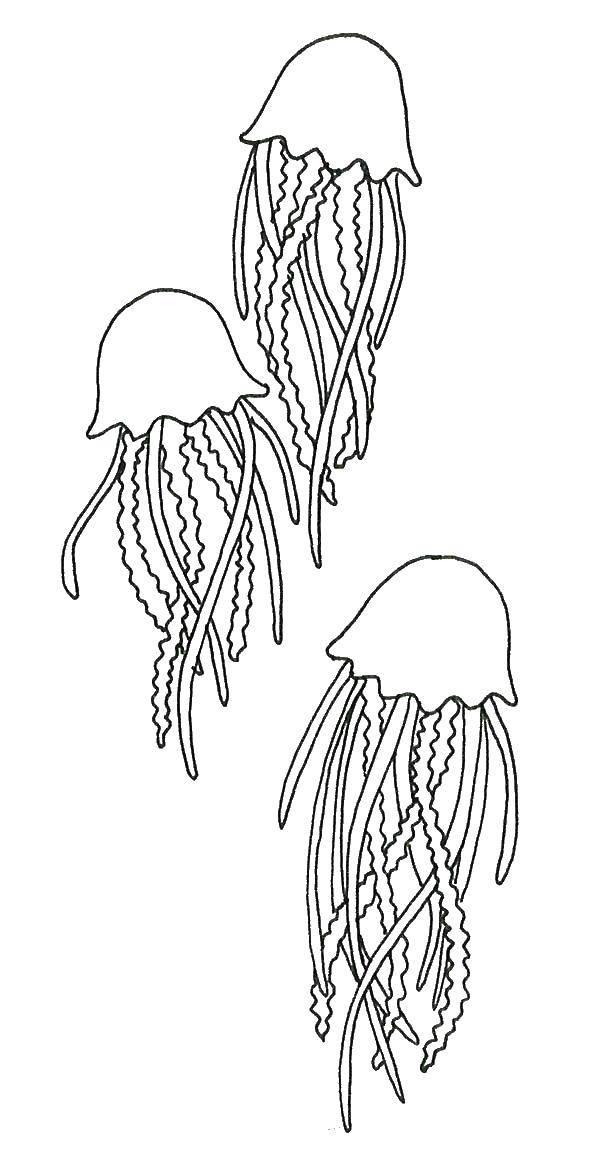раскраска медузы под водой очень