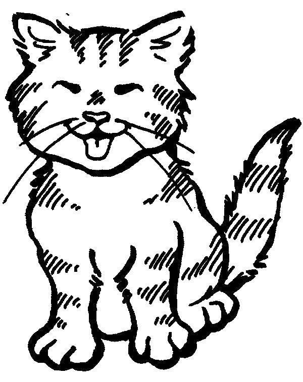 Черно белая картинка беспризорная кошка