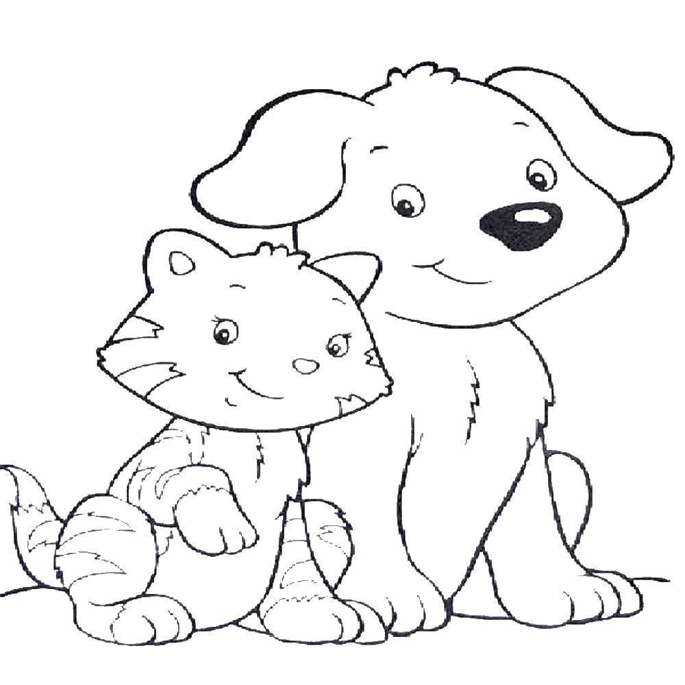рисунки маленьких щенят и котят кажутся голубыми из-за