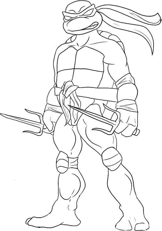 Раскраска черепашки ниндзя Скачать черепашка ниндзя, черепашки, оружие, мультики.  Распечатать