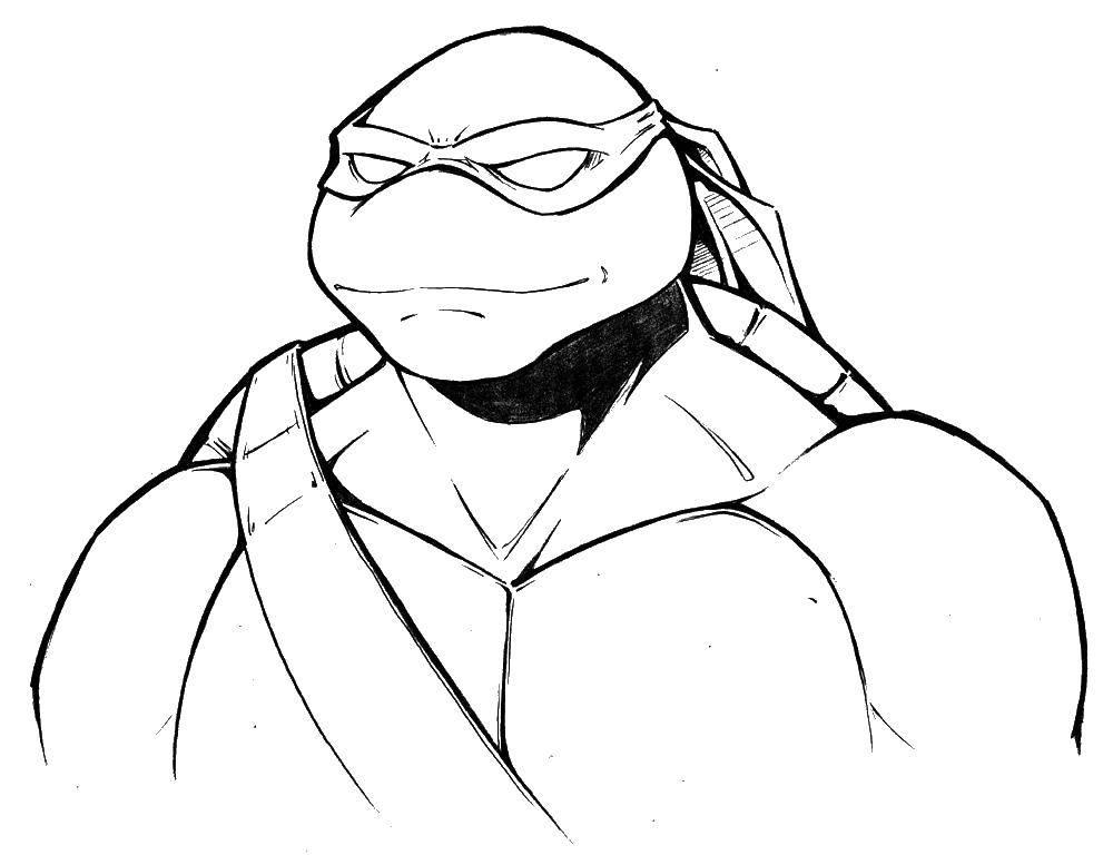 днём рождения черепашки ниндзя рисунки карандашом часть выпуска