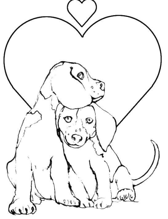 Coloring Love dogs Download animals, dogs, love.  Print ,Pets allowed,