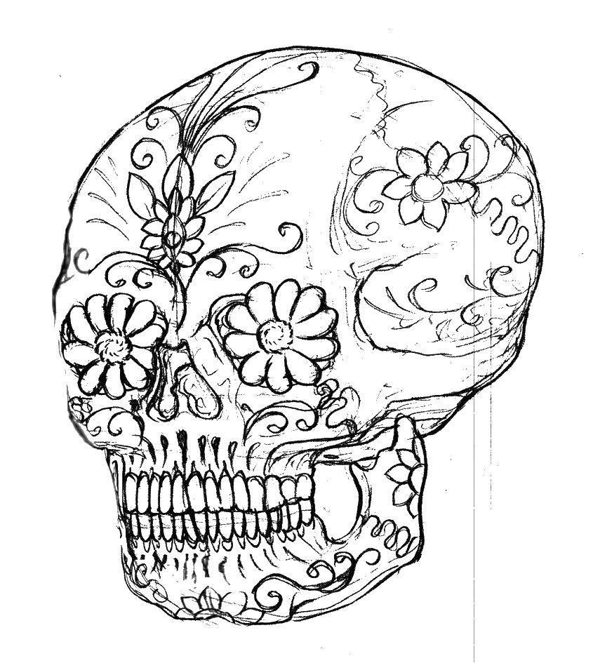 череп человека раскраска непосредственной близости сушилки