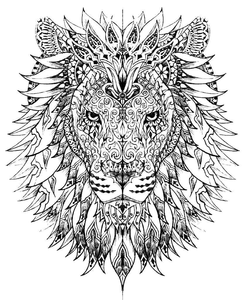 Раскраски этнический, Раскраска Этнический лев Антистресс.