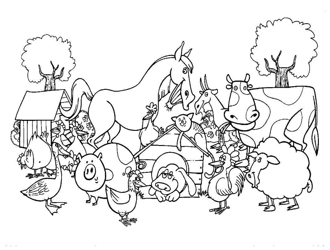 раскраска животные на ферме распечатать комедийной