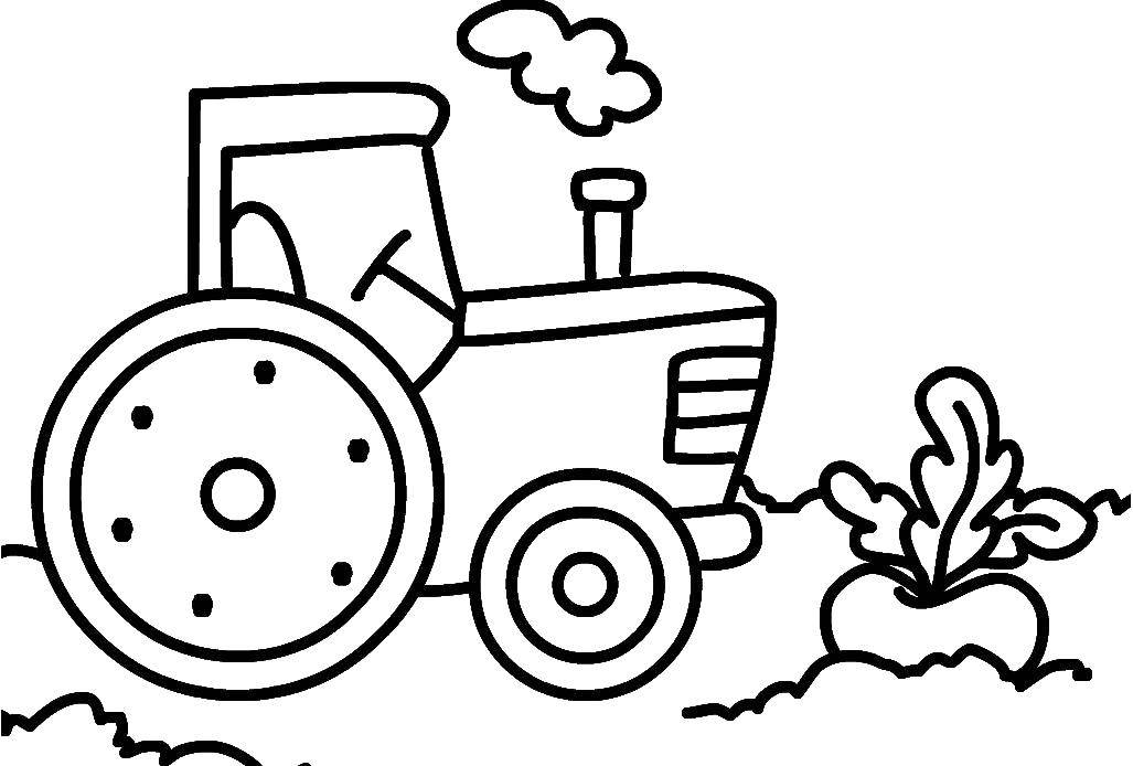 Coloring sheet tractor Download animals, kitten, cat, nature.  Print ,Cats and kittens,