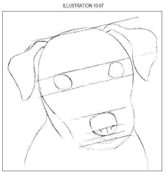 Раскраски Хаски, Раскраска Солбака хаски собаки хаски.