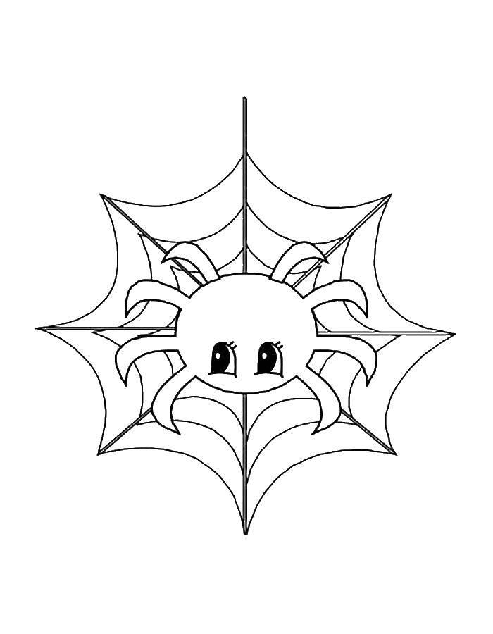 Раскраски Человек, Раскраска Человек паук сражается с ...