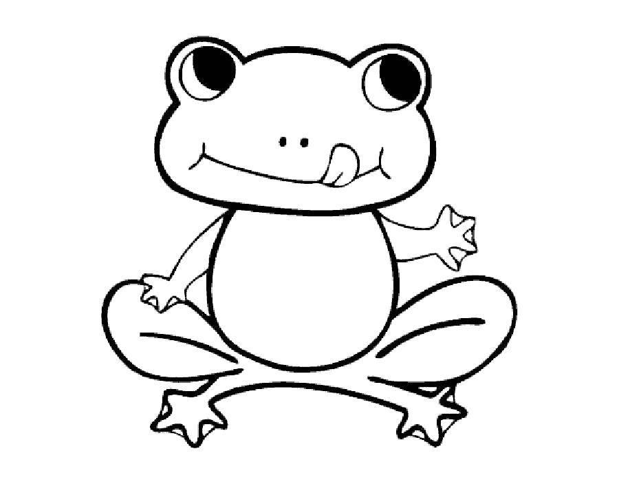 Coloring sheet frog Download .  Print