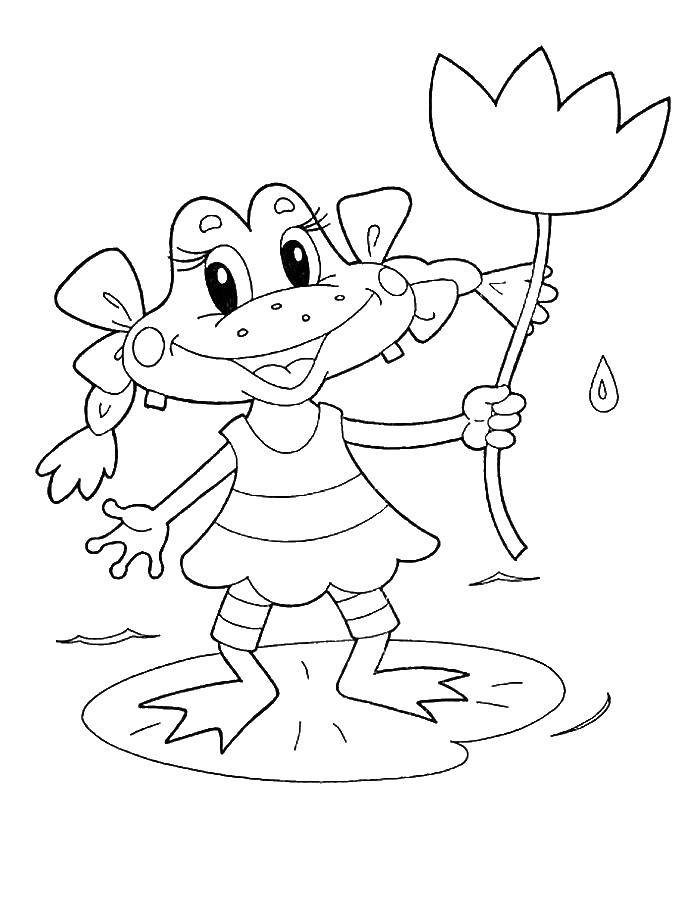 Coloring Honeyfrog. Category the frog. Tags:  Reptile, frog.
