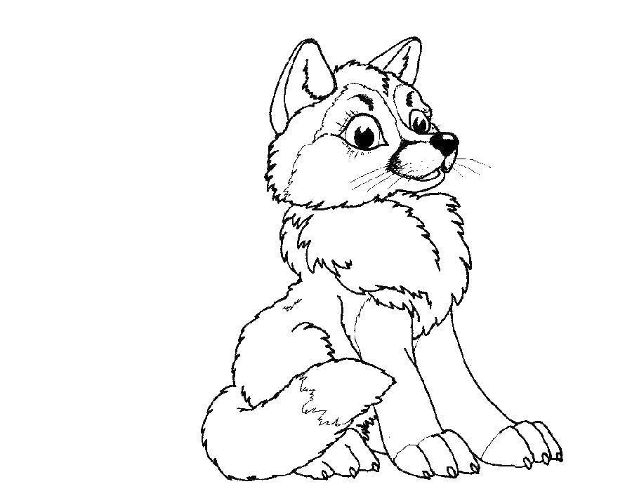 Картинки тварин розмальовки