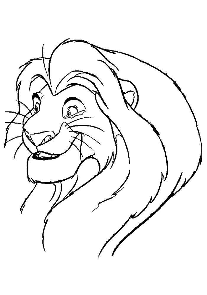 Раскраски лев, Раскраска Лев на горе Король лев.