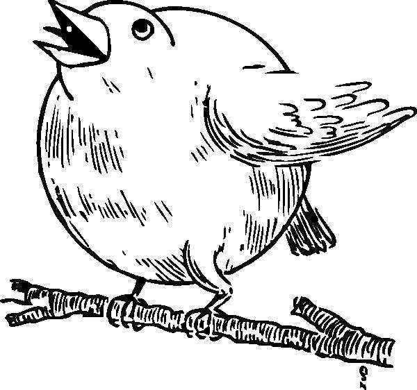 оптом картинка где птичка толстая этом они