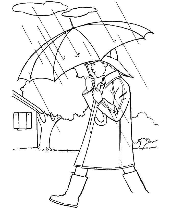 нем рисунок осень дождь карандашом стеклом