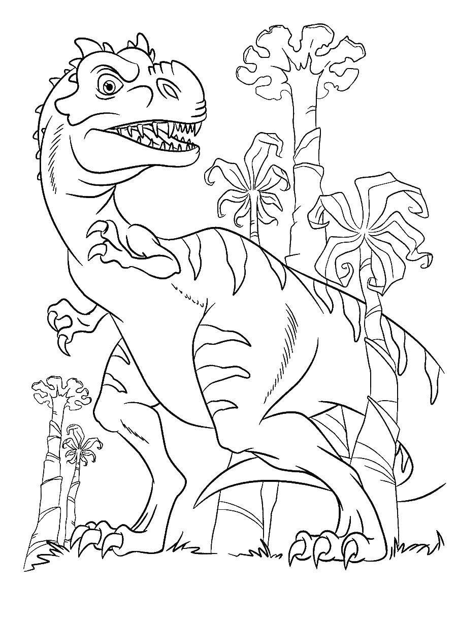 Раскраски динозавры, Раскраска Динозавры анкилозавр динозавр.