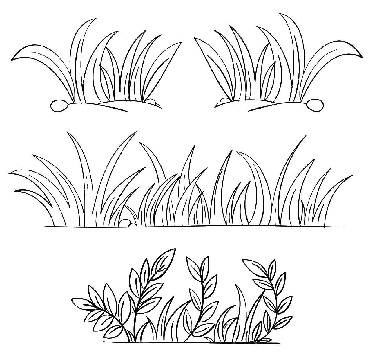Coloring pages The outline for cutting Скачать .  Распечатать