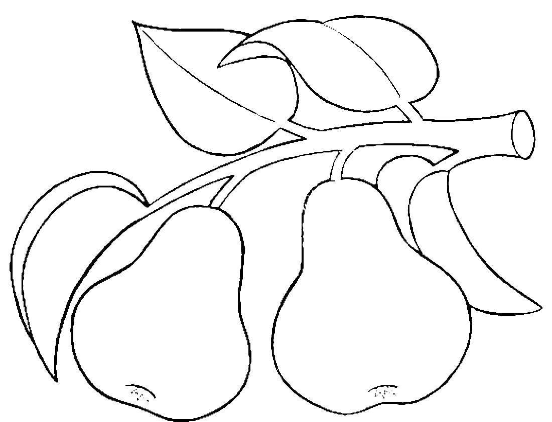 шаблоны картинок для вырезания из бумаги распечатать фрукты была самая