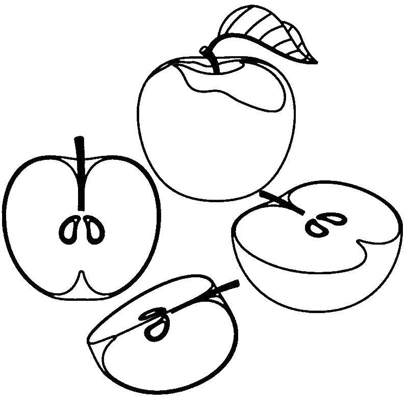Coloring Slices of apples. Category Apple. Tags:  Apple, fruit.