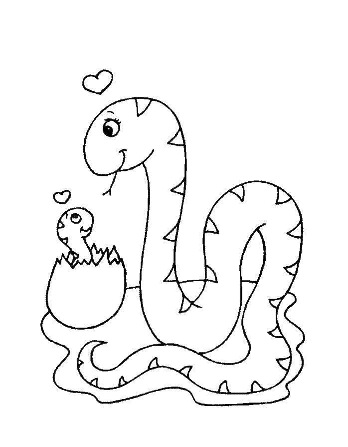 Раскраски Раскраска Кобра на дерево змея, скачать ...